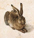 Schilderij van een jong konijn, door Albrecht Dürer, gemaakt in 1502