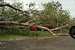 Tropische cycloon Yasi: een auto verpletterd door een boom in Townsville, Queensland