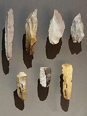 Latere paleolithische bladen gemaakt door Homo sapiens