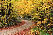 Oktober is een herfstmaand op het noordelijk halfrond, zoals hier te zien is in Vermont.