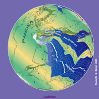 230 Tektonische Rekonstruktion der Ma-Platte