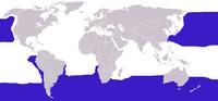 Die blauen Teile der Karte zeigen, wo die Albatrosse leben.