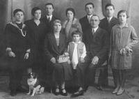 De leden van deze familie zijn in sommige opzichten vergelijkbaar, in andere opzichten anders...