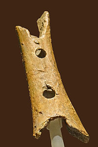 Het object dat wordt tentoongesteld in het Ljubljana Museum