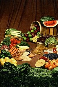 Verschillende planten die gegeten worden.