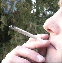 """Een """"joint"""""""