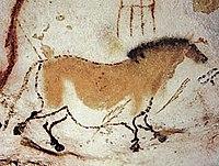 Een paard, uit de grotten van Lascaux, in Frankrijk, ongeveer 16.000 jaar oud.