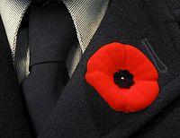 Klaprozen worden vaak gedragen op Remembrance Day, en een paar dagen ervoor