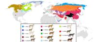 Wo verschiedene Unterarten des Grauen Wolfes leben