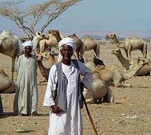 Bejanomaden aus Nordostafrika
