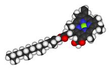 Raumfüllendes Modell des Chlorophyll a-Moleküls