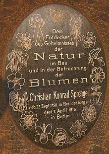 Sprengel erinnerte sich: Eine kleine, nach dem Frontispiz seines Buches gestaltete Plakette befindet sich im Botanischen Garten Berlin