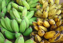 Grüne und gelbe Bananen auf einem Markt