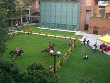 Dzień Otwarty jazda konna na łące na terenie kampusu