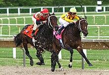 Paardenrennen in Arlington Park, 2007