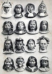 In de 19e eeuw was het gebruikelijk om mensen naar ras in te delen. Dit toont zo'n classificatie; gebaseerd op werk van Karl Ernst von Baer, 1862