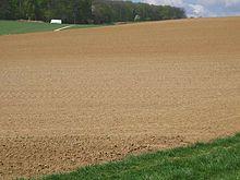 Lößfeld in Deutschland (Löß ist windgetriebener Staub, der meist aus Schlick besteht)