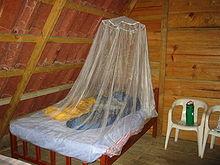 Защита от комаров - как при использовании противомоскитной сетки во время сна - это лучший способ избежать получения вируса Zika.
