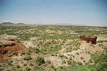 Wąwóz Olduvai, luty 2006