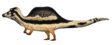 Illustratie van hoe Oxalaia eruit zou kunnen hebben gezien, gebaseerd op zijn verwanten
