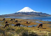 Vulcão Parinacota no norte do Chile
