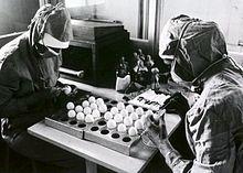 Twee arbeiders maken openingen in kippeneieren bij de voorbereidingen voor het maken van mazelenvaccins