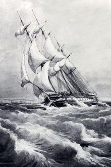 HMS RatelslangIn de 19e eeuw reisden  naturalisten op dit soort schepen! Thomas Henry Huxley ging de wereld rond op dit schip. Hij vond zijn vrouw in Sydney, Australië