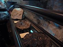 Einige sehr alte Steine in Hongkong gefunden
