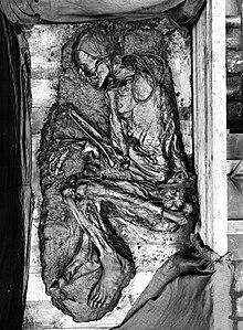 De overblijfselen van Tollund Man na ontdekking