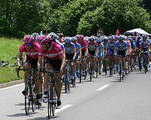 """Het Peloton (betekent """"pack"""" in het Frans) van de Tour de France"""