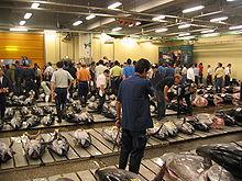 Een veiling van verse tonijn, in Japan