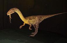 Coelophysis , einer der ersten Dinosaurier, tauchte in der Obertrias-Epoche auf.