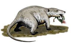 Repenomamus jaagde soms op jonge dinosaurussen