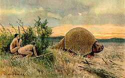 Glyptodon - eine alte Tierart, die mit dem Gürteltier verwandt ist. Es lebte während des Pleistozäns in Südamerika.