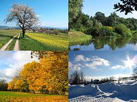 De vier seizoenen, lente, zomer, herfst en winter.