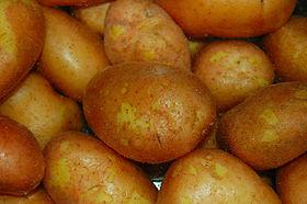 Kartoffeln mit Schale enthalten 20 mg/100 g Vitamin C