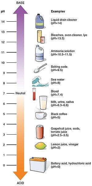 Wartości pH niektórych popularnych substancji