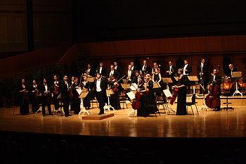 Das Wiener Mozart Orchester ist ein Kammerorchester (kleines Orchester)