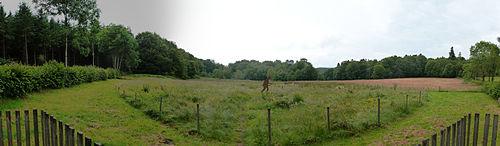 Panoramablick auf die Quelle der Yonne