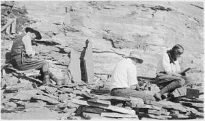 Charles escava o xisto Burgess (perto de Field, British Columbia) com sua esposa e filho, na pedreira que agora leva seu nome.