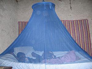 Slapen onder met insecticiden behandelde bednetten (ITN's) helpt het risico op het krijgen van malaria te verminderen. Alleen pyrethroïde-insecticiden zijn goedgekeurd voor gebruik op ITN's. Dit zijn kunstmatige bestrijdingsmiddelen die vergelijkbaar zijn met het natuurlijke bestrijdingsmiddel pyrethrum, gemaakt door chrysantenbloemen.