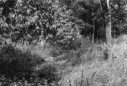 Plaats van het bloedbad van 1858 in Marais des Cygnes, in het graafschap Linn, Kansas.