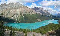 Peyto Lake in Alberta.
