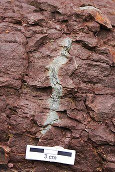 Pierre de boue rouge autour d'une racine carbonisée
