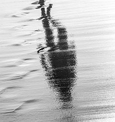 Een reflectie op zand en water