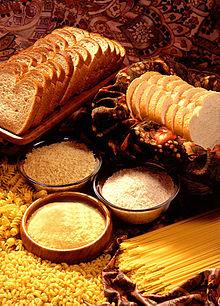 Zetmeelvoedsel gemaakt van complexe koolhydraten